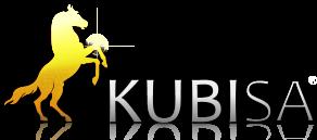 Kubisa